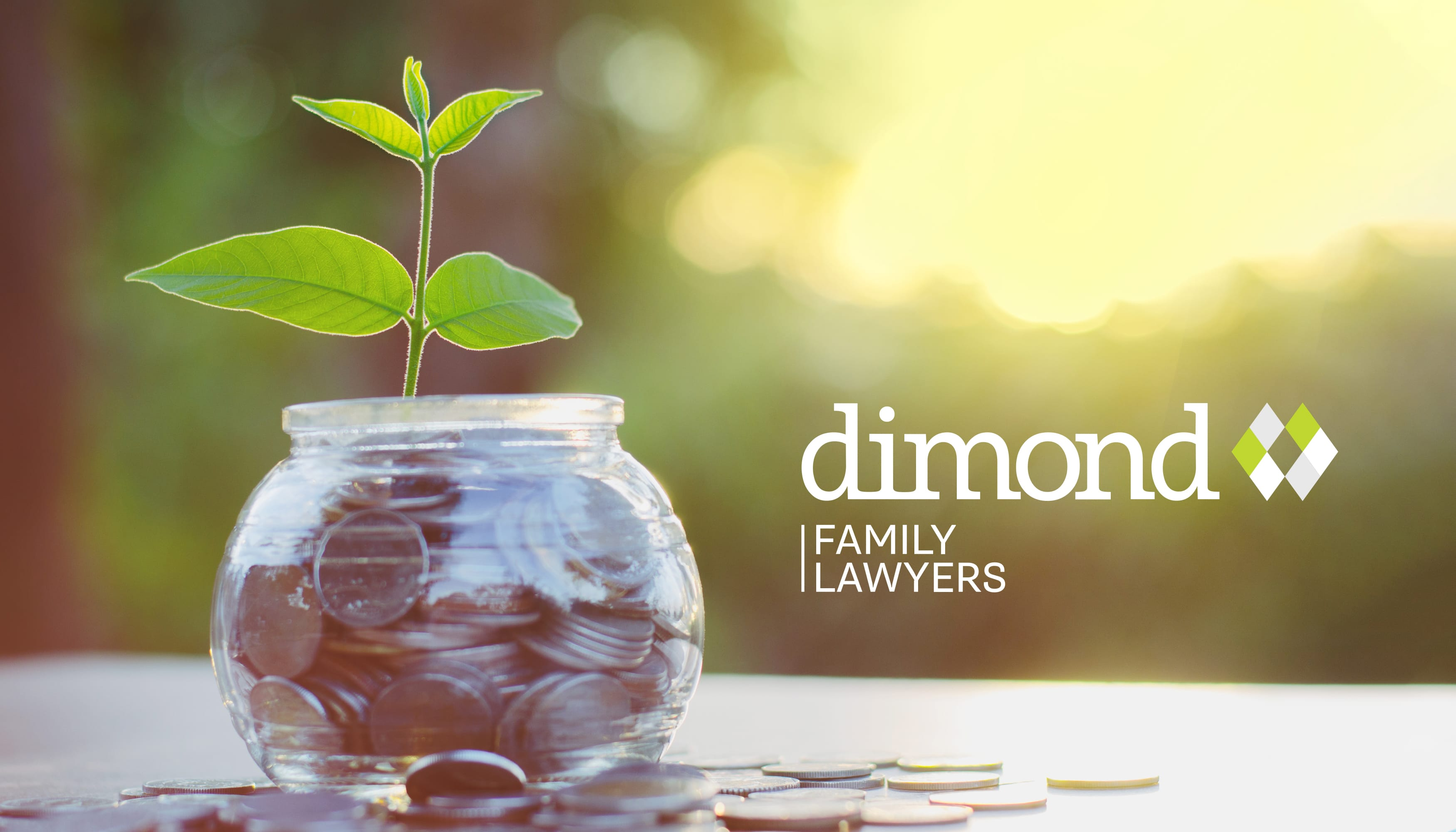 Dimond Family Lawyers | Pixel Whip Creative