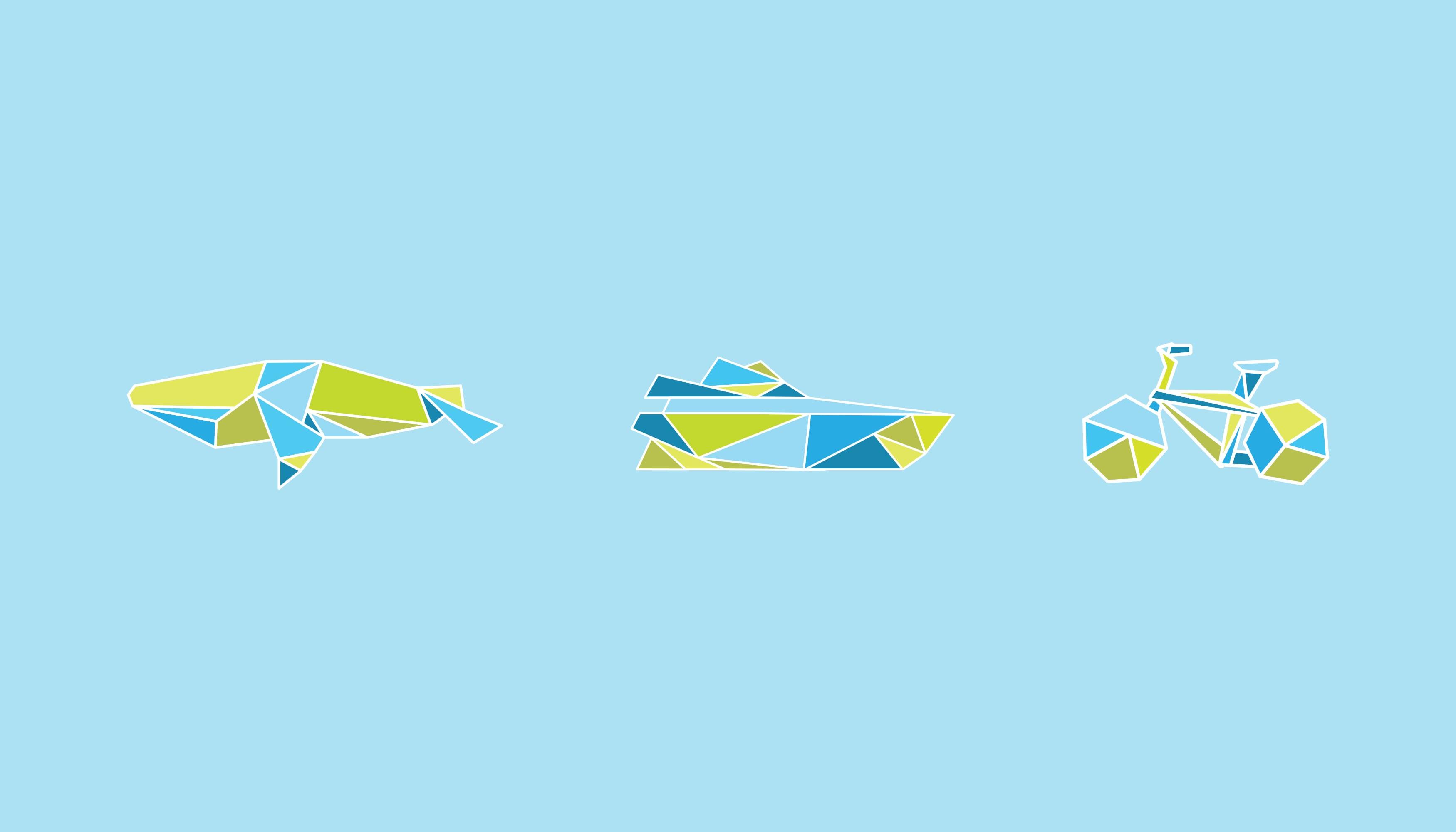 Rottnest Fast Ferries | Pixel Whip Creative